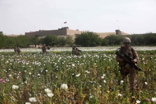 afghan_opium-fields-us-soldiers.jpg