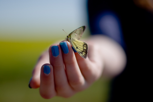 give-thanks-to-butterfly
