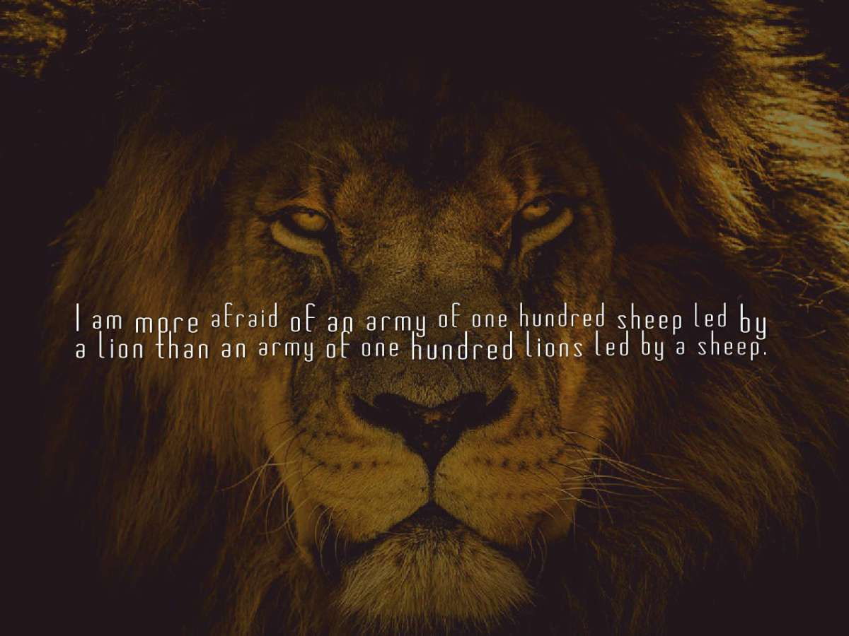 quotes-I-am-more-afraid-of-