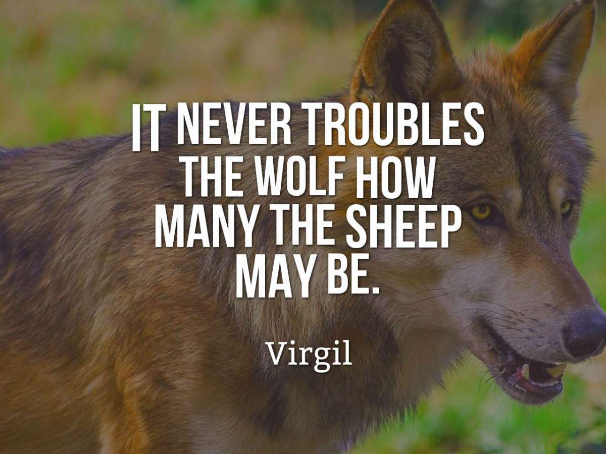 quotes-It-never-troubles-th